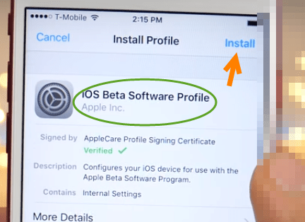 iOS 11 Beta Profile installation